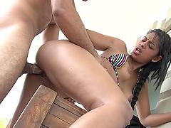 Round ass latina babe